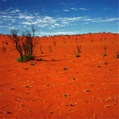 Uluru Landscape, 1992